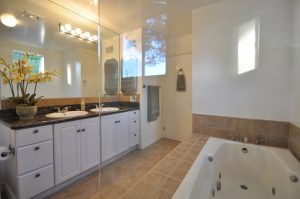 master bath room with tub